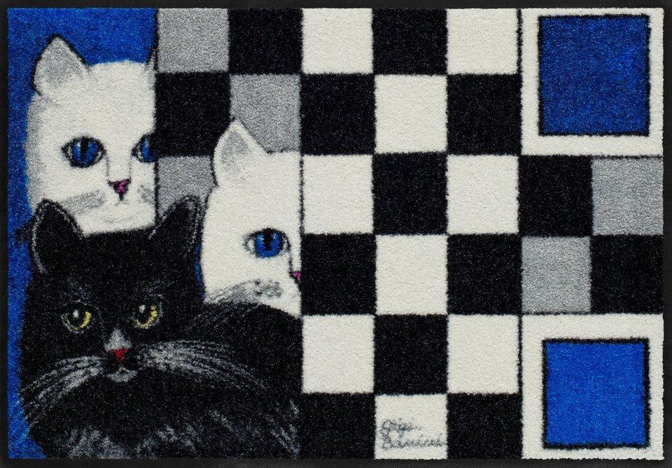 Fußmatte, Salonloewe, »Amici« by Gigi Banini, waschbar, In- und Outdoor geeignet in Bunt