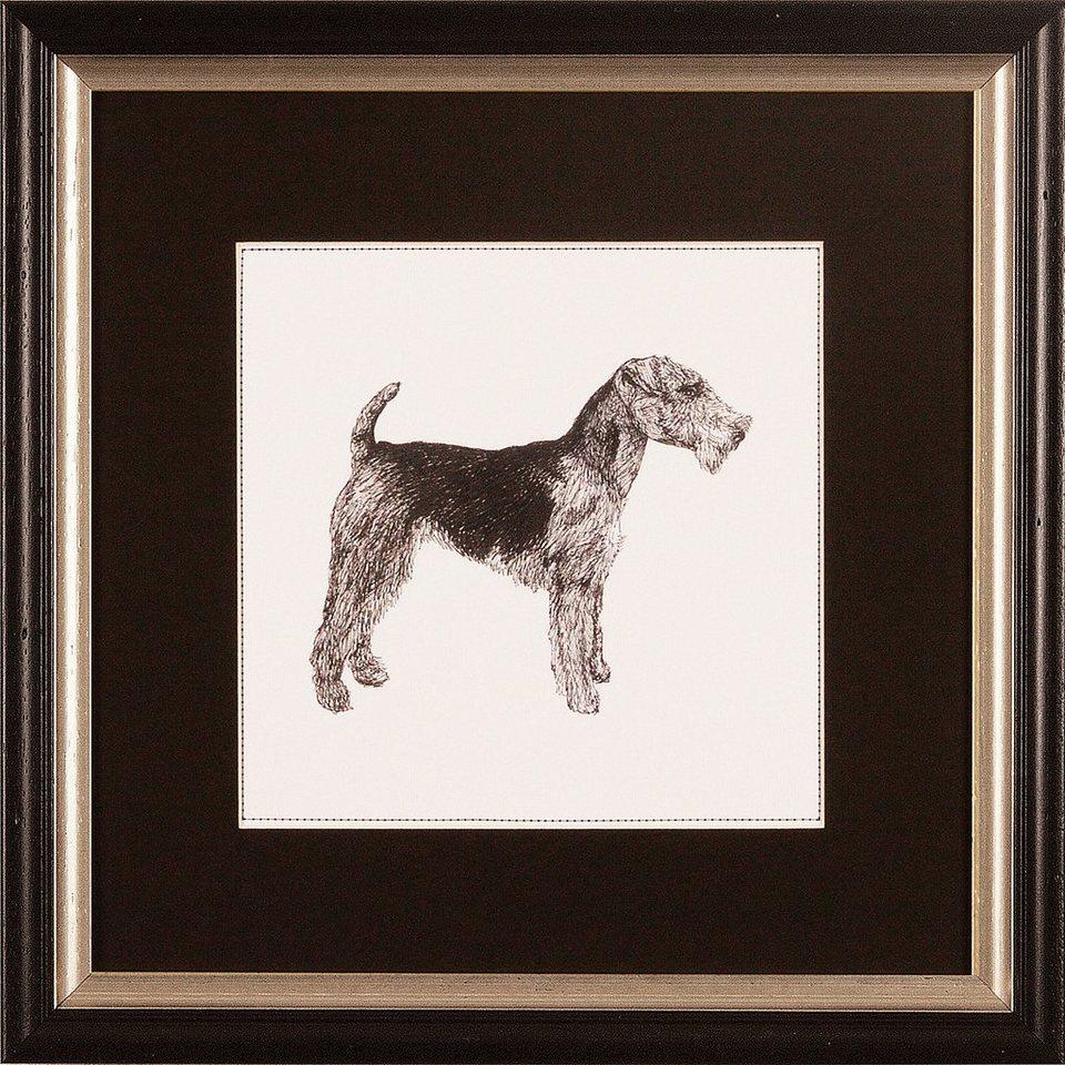G&C gerahmter Kunstdruck »Meagher: Best in Show Airedale Terrier«, 30/30 cm in Schwarz/weiß