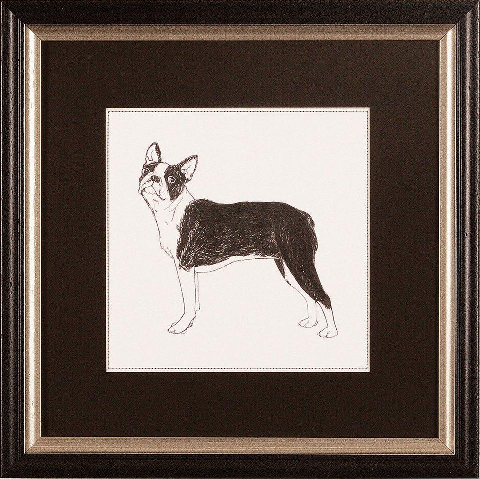 G&C gerahmter Kunstdruck »Meagher: Best in Show Boston Terrier«, 30/30 cm in Schwarz/weiß