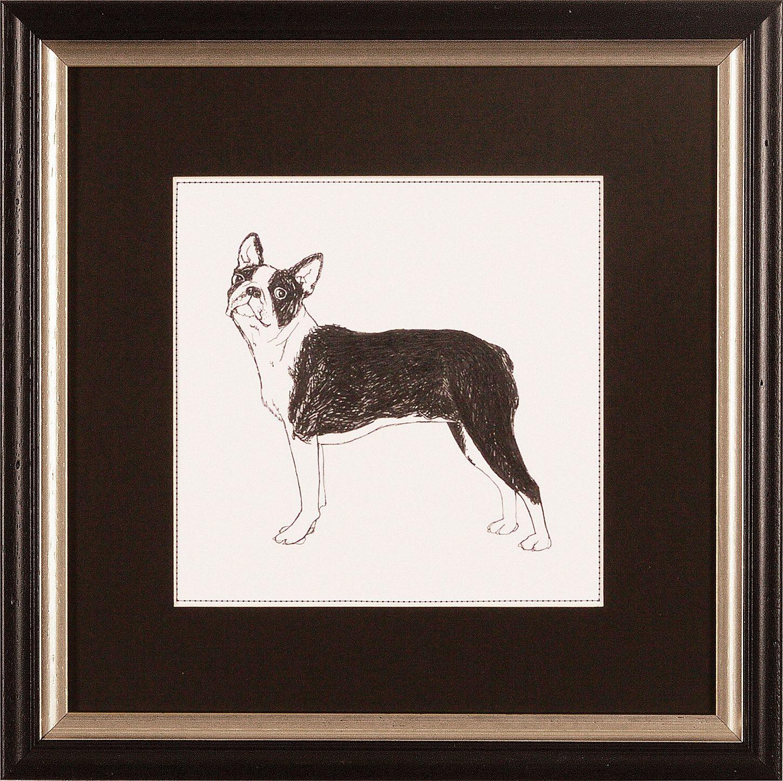 G&C gerahmter Kunstdruck »Meagher: Best in Show Boston Terrier«, 30/30 cm