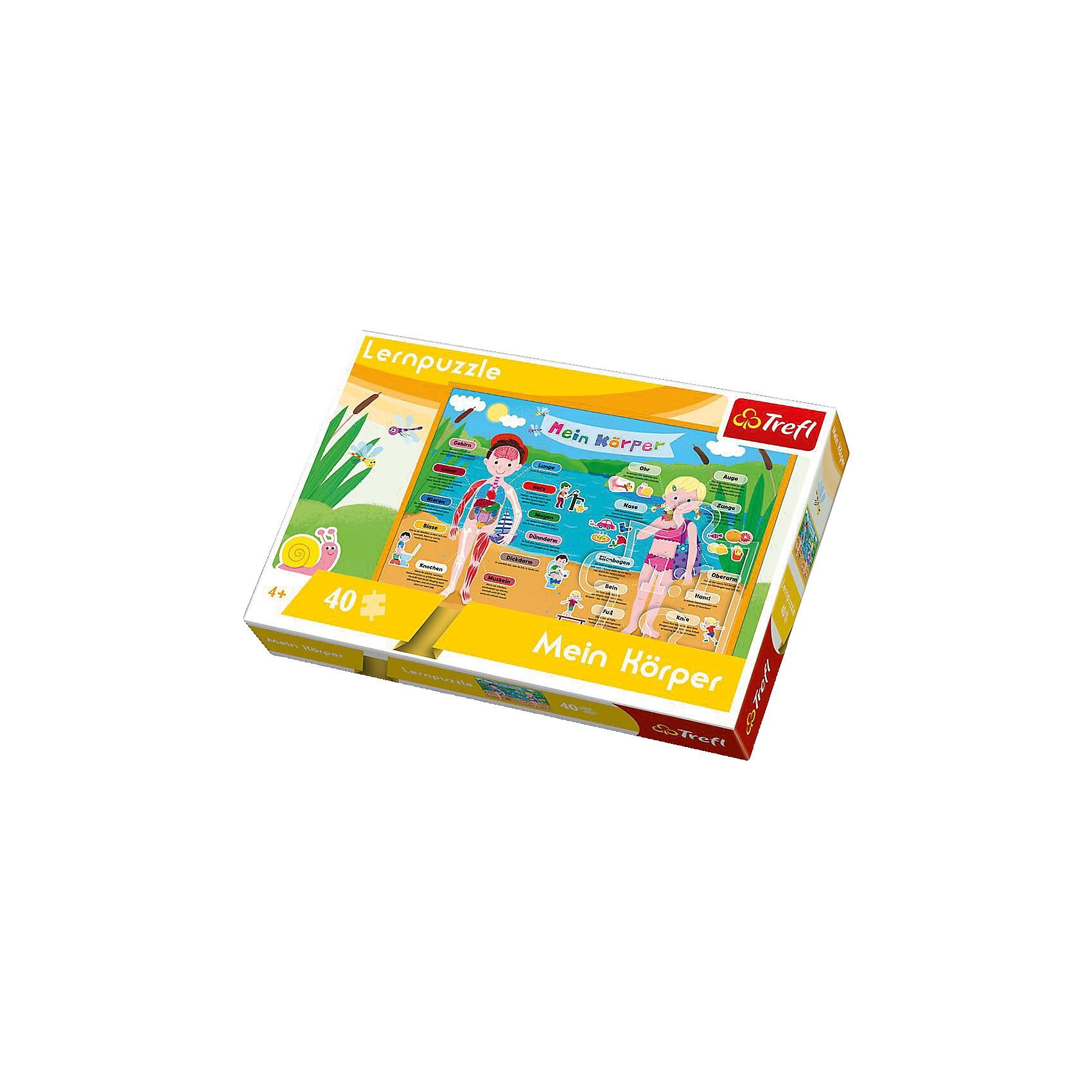 Trefl Lernpuzzle 40 Teile - Mein Körper