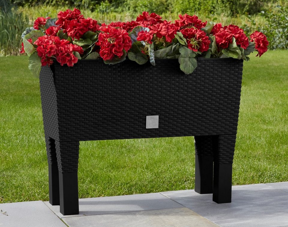 Pflanzkasten »Rato Case High, 46 cm« schwarz in schwarz