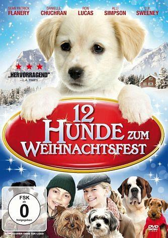 DVD »12 Hunde zum Weihnachtsfest«
