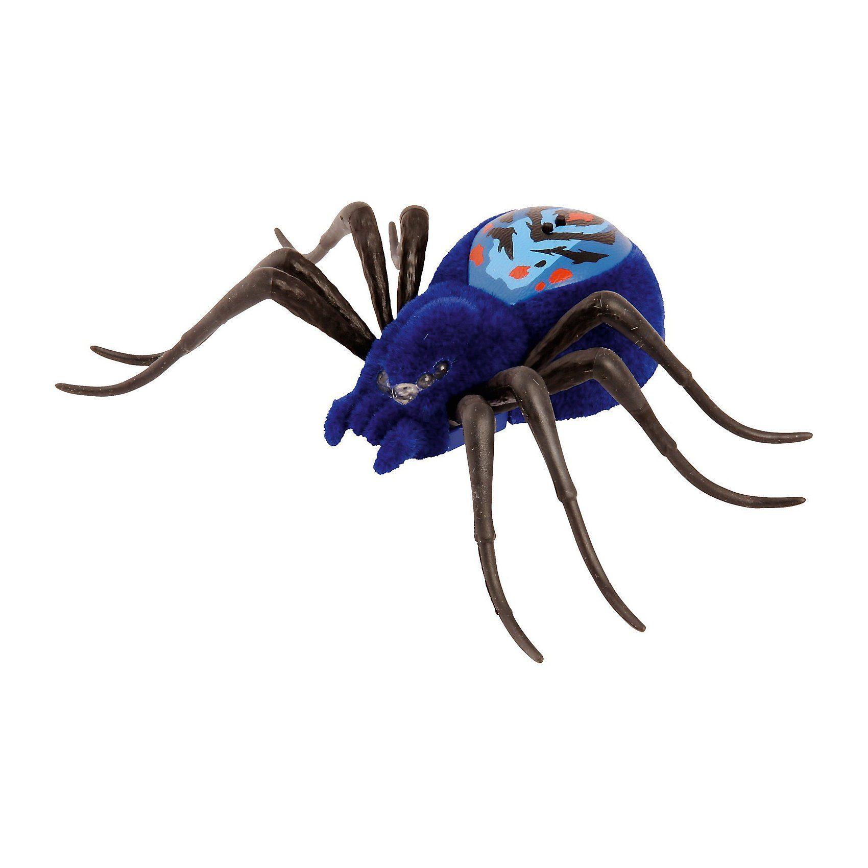 BOTI WILD PETS S1 Spinne blau