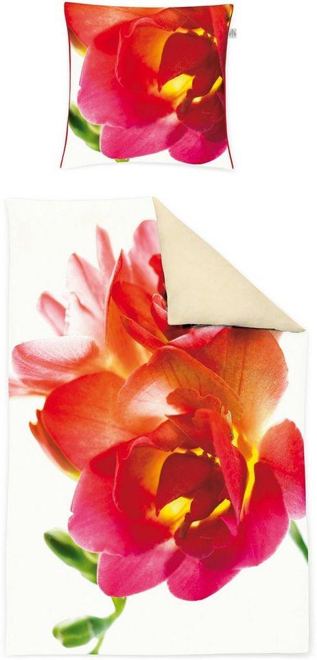 Bettwäsche, Irisette, »Juwel-K 8836«, mit großer Blüte in rot