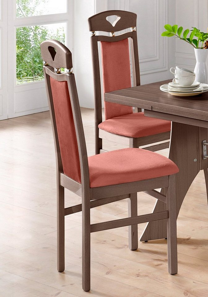 Stühle (2 Stück) in Bezug terra