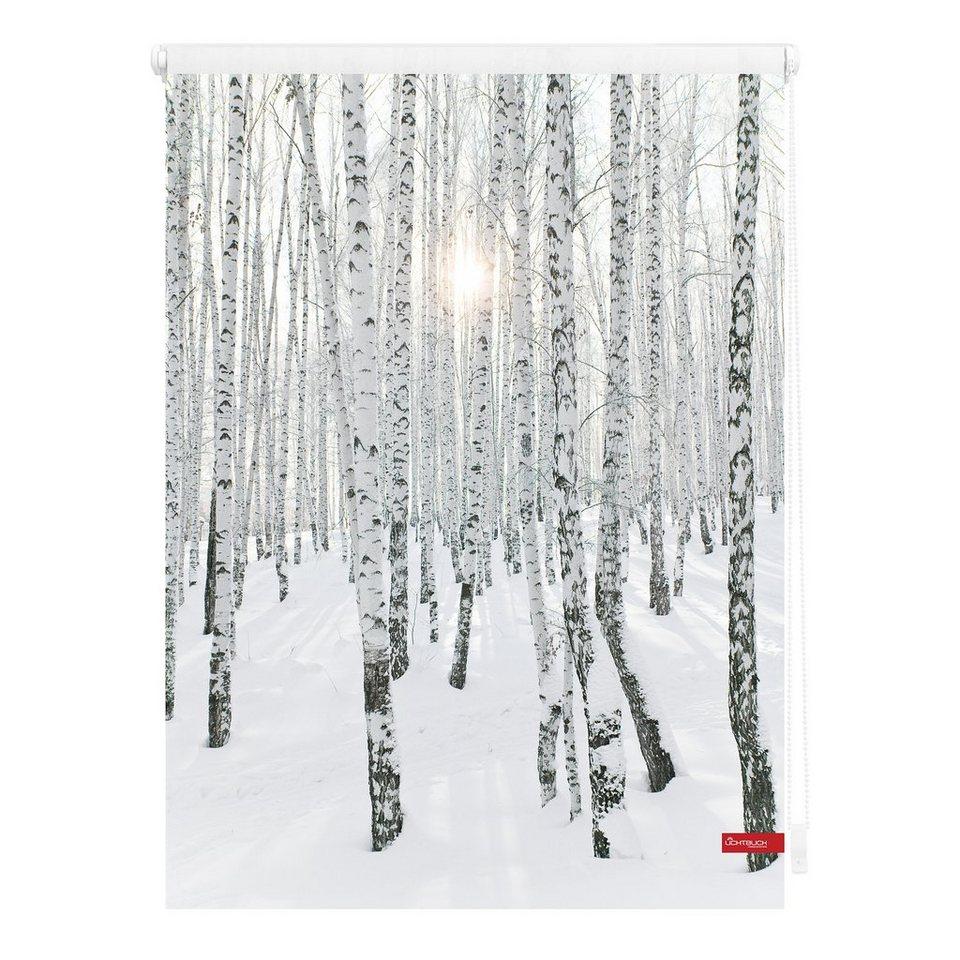 seitenzugrollo klemmfix dekor birkenwald lichtblick lichtschutz ohne bohren online kaufen. Black Bedroom Furniture Sets. Home Design Ideas