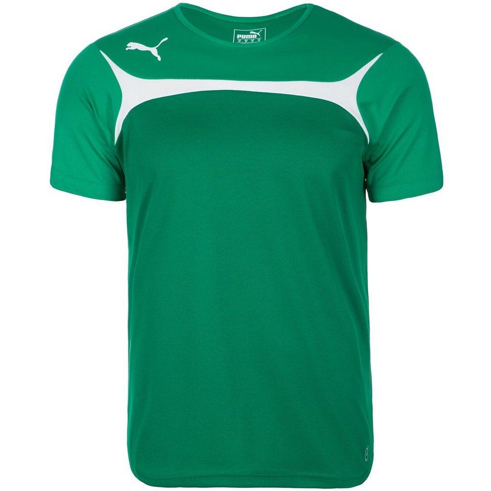 PUMA Esito 3 Trainingsshirt Herren in grün / weiß