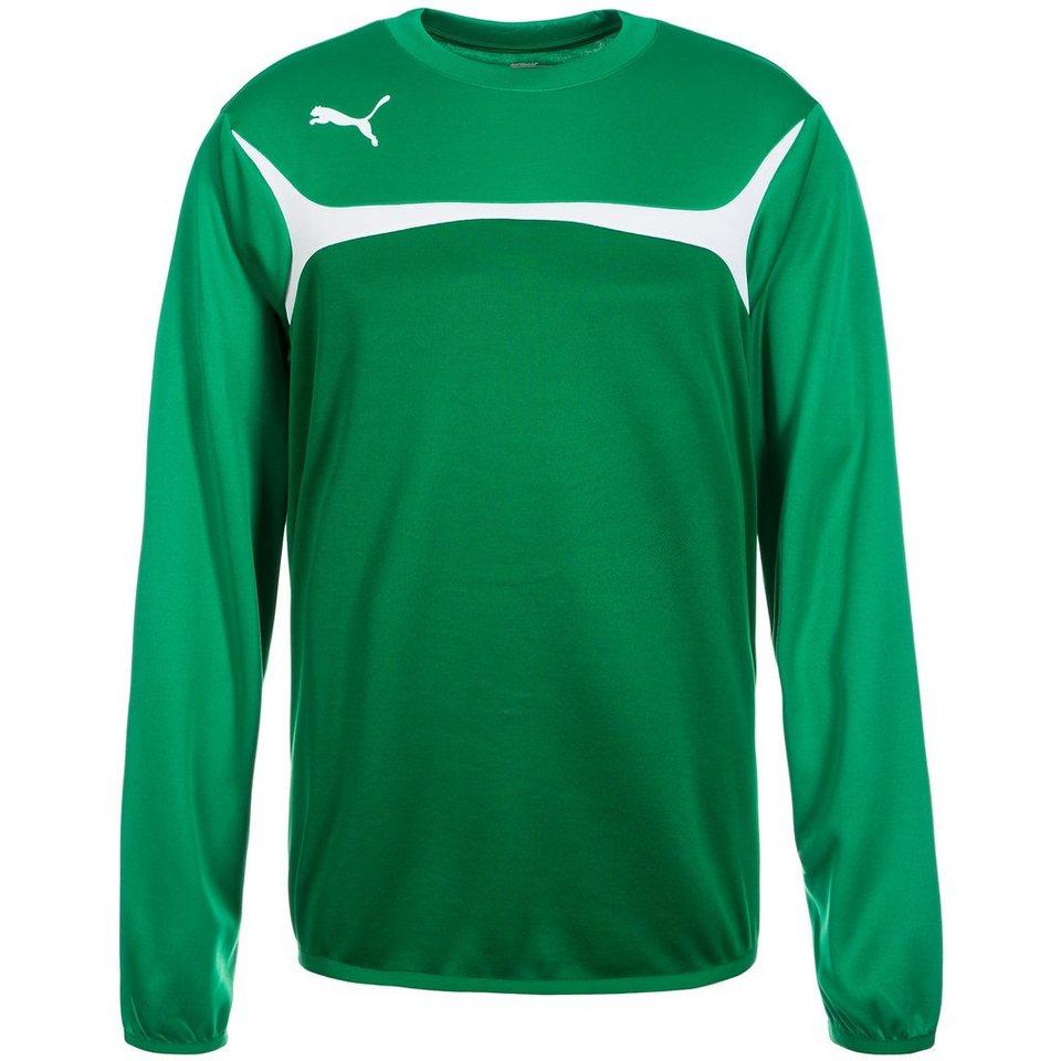 PUMA Esito 3 Trainingssweat Herren in grün / weiß