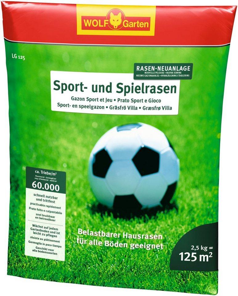 Sport- und Spielrasen in grün