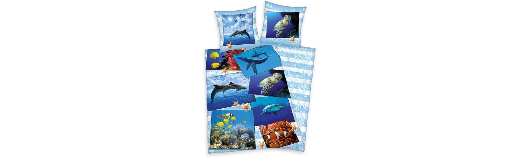Bettwäsche, Young Collection, »Meerestiere«, mit Tieren