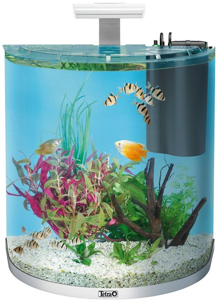aquarium aquaart explorer line led 60l kaufen otto. Black Bedroom Furniture Sets. Home Design Ideas