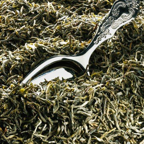 Schrader Grüner Tee China Yünnan Grün Silvertips Bio
