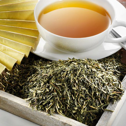 Schrader Grüner Tee Japan Kirishima Kukicha Bio