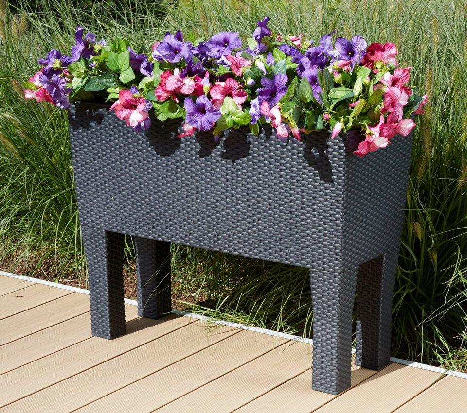 Pflanzkübel & Blumenkübel online kaufen