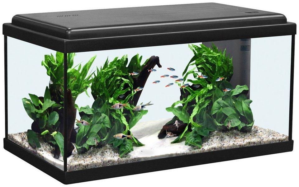 Aquarium »Advance 60 LED« in schwarz