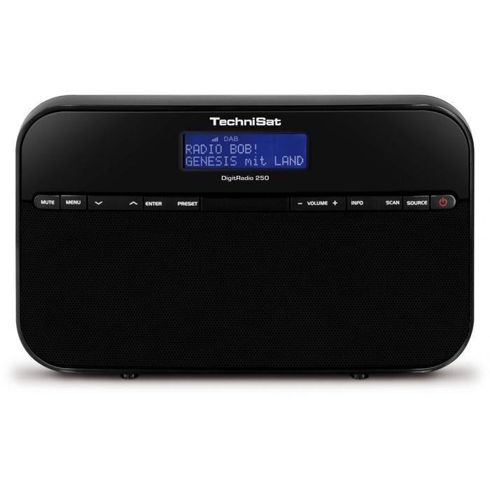 TechniSat Portables Stereo-Radio für DAB+ und UKW-Empfang »DigitRadio 250«
