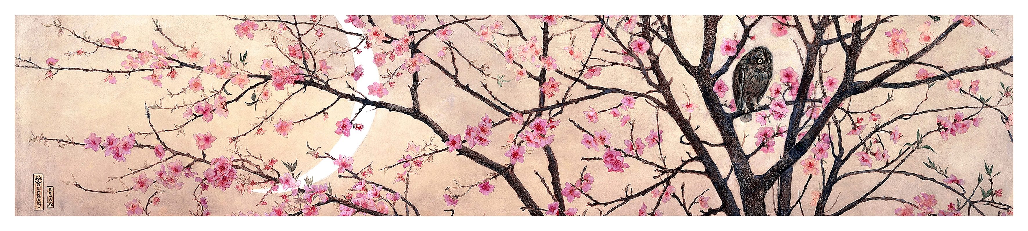 Home affaire Fototapete »Coleman - Primavera«, 250/50 cm