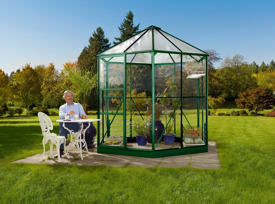 vitavia gew chshaus pavillon hera 4500 bxt 253x221 cm. Black Bedroom Furniture Sets. Home Design Ideas