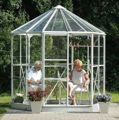 vitavia gew chshaus pavillon hera 4500 bxt 253x221 cm alufarben online kaufen otto. Black Bedroom Furniture Sets. Home Design Ideas