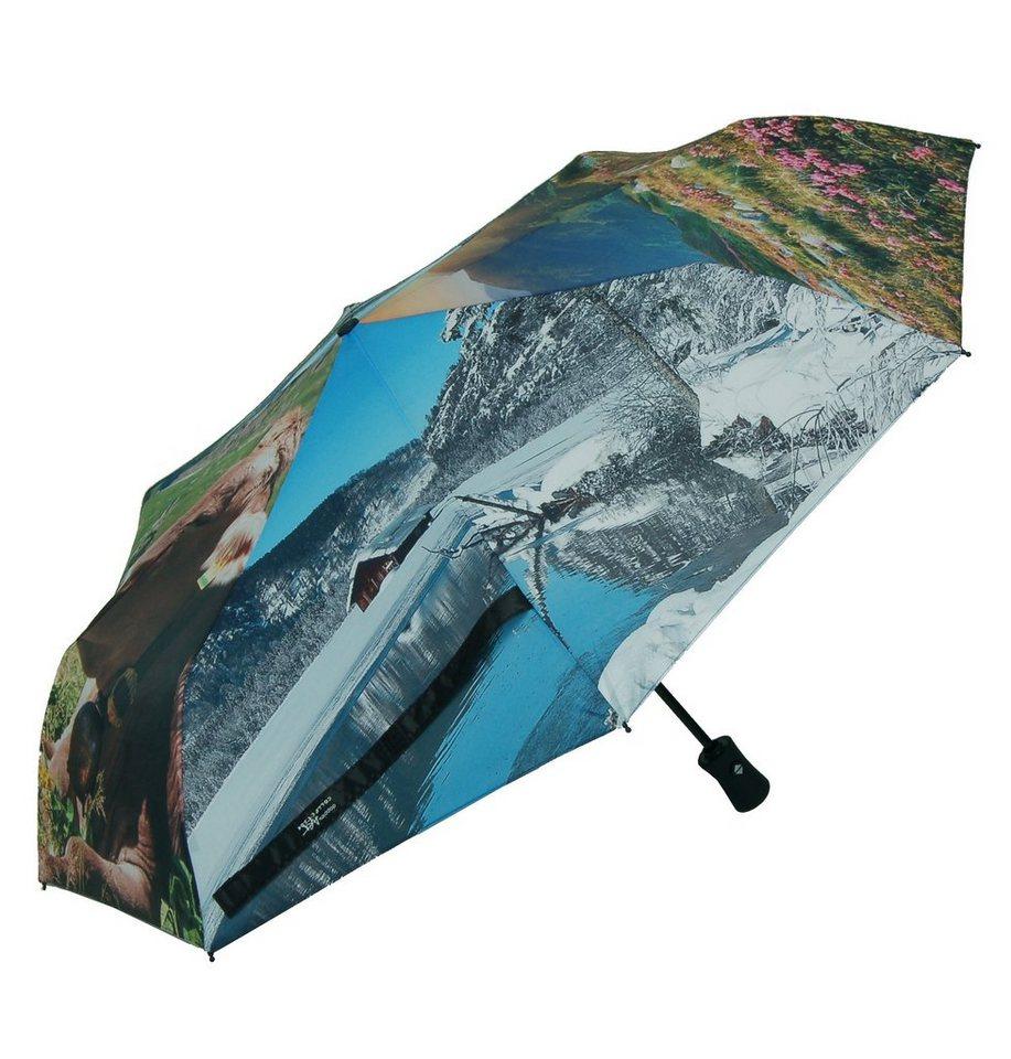 Doppler Regenschirm, »Taschenschirm Almrausch« in bunt