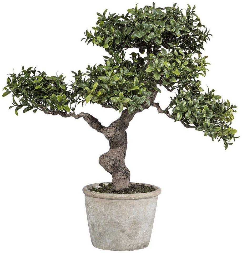 Kunstpflanze »Bonsai Murraya« inkl. Pflanzgefäß in grün