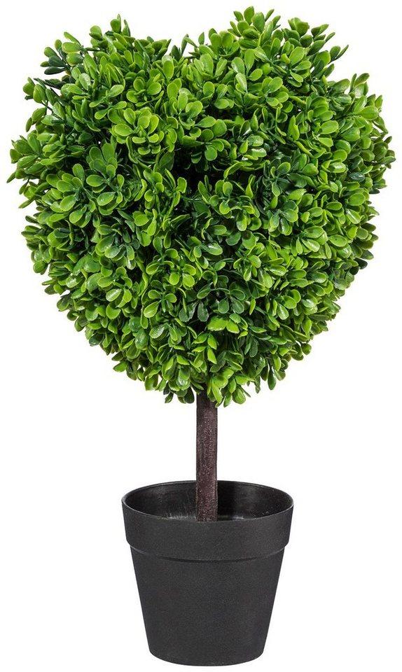 Kunstpflanze »Buchsbaumherz« inkl. Pflanzgefäß in grün