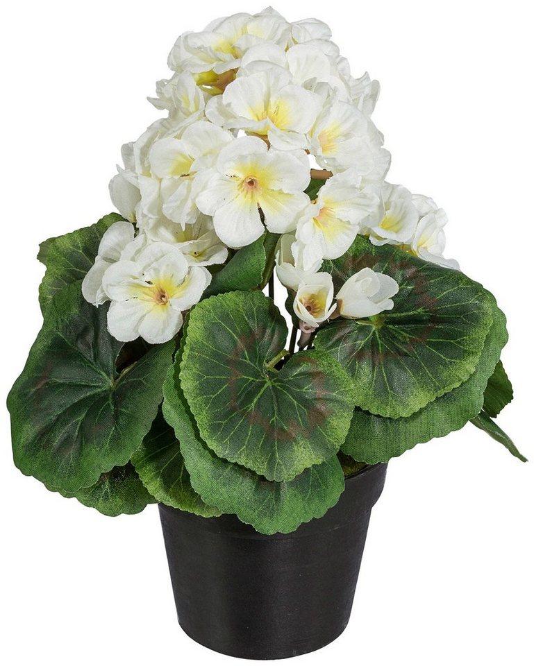 Kunstpflanze »Geranienbusch« weiß inkl. Pflanzgefäß (3 Pfl.) in weiß