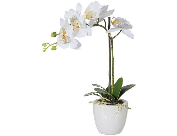 Kunstpflanze »Phalenopsis« weiß inkl. Pflanzgefäß (H: 33 cm)