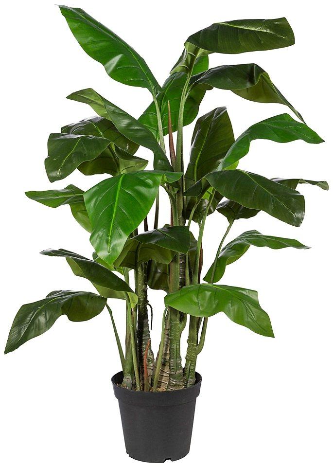 Kunstpflanze »Taropflanze« inkl. Pflanzgefäß (H: 140 cm) in grün