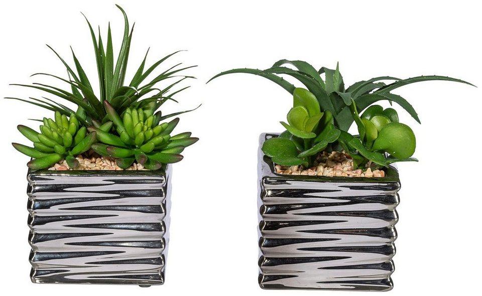 Kunstpflanze »Sukkulentenarrangement« inkl. Pflanzgefäß (2 Pfl.) in grün