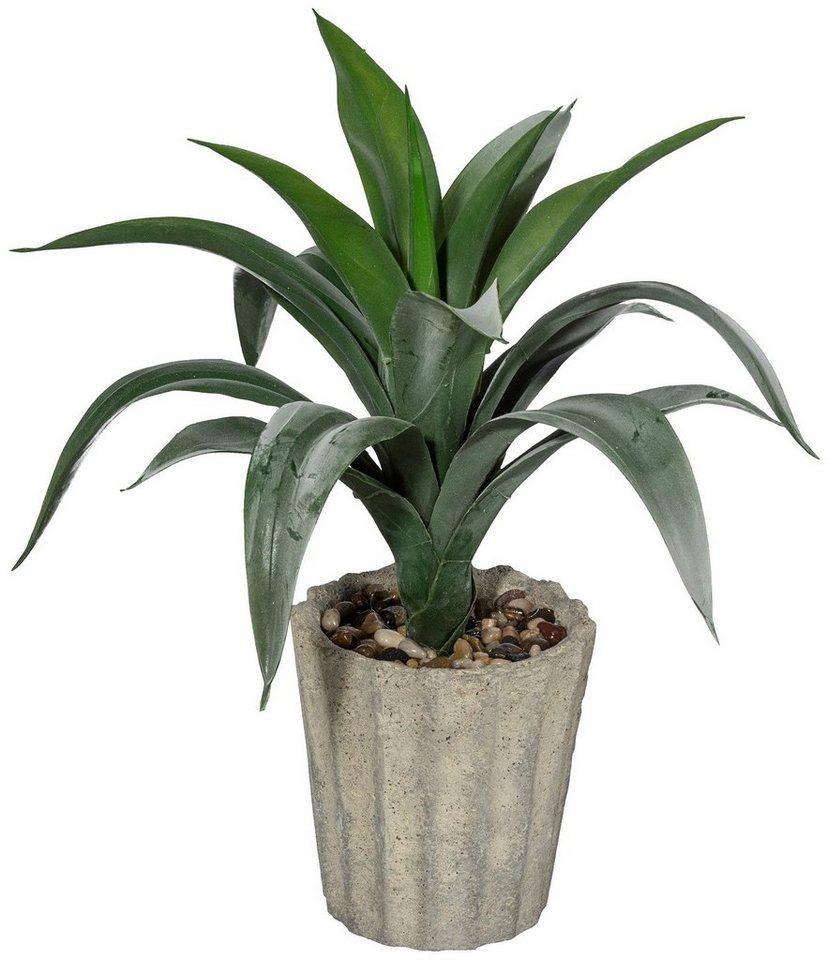 Kunstpflanze »Agave« inkl. Pflanzgefäß (H: 42 cm) in grün