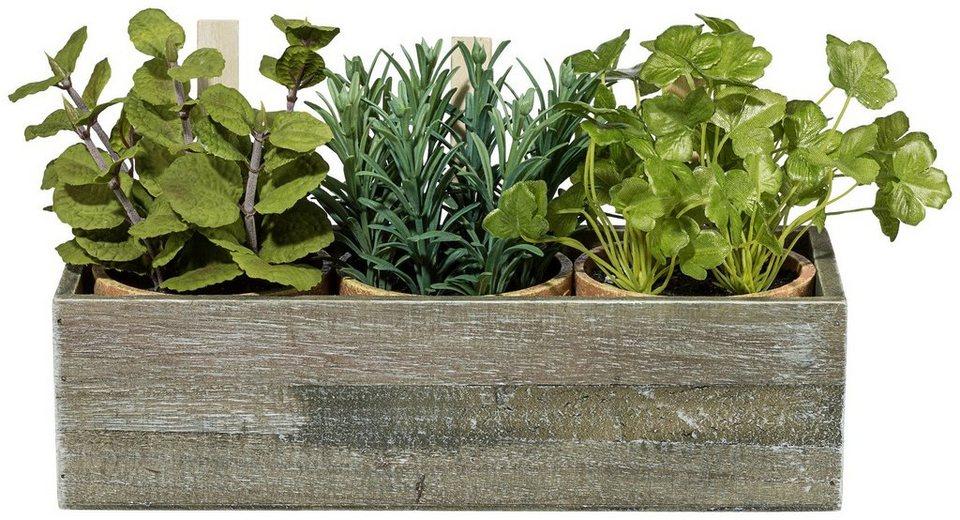Kunstpflanze »Kräutermix« inkl. Pflanzgefäß in grün