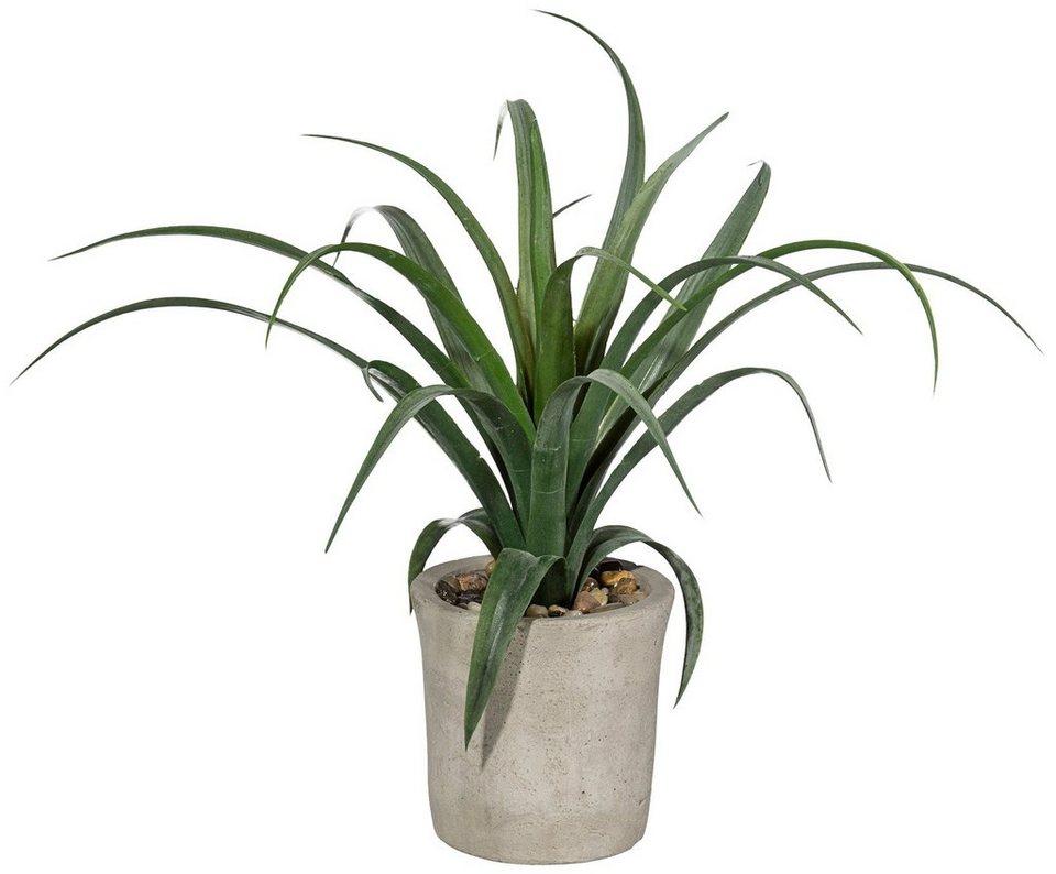 Kunstpflanze »Agave« inkl. Pflanzgefäß (H: 35 cm) in grün