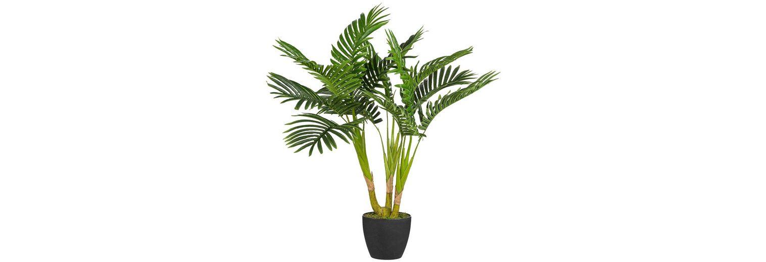 Kunstpflanze »Kentiapalme« inkl. Pflanzgefäß (H: 70 cm)
