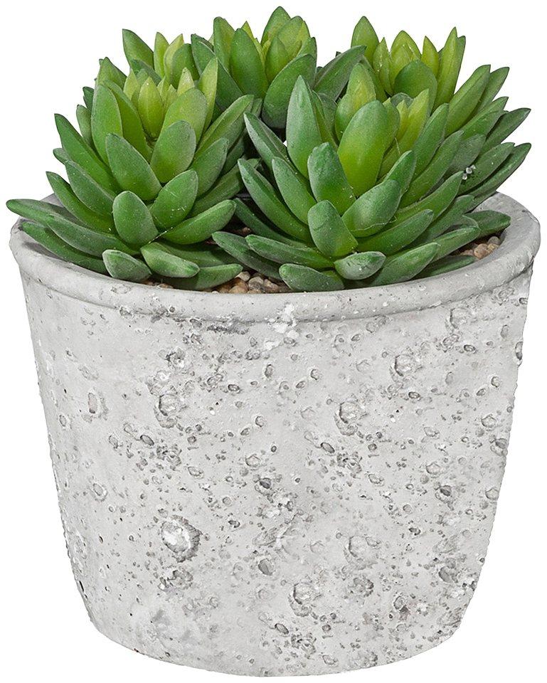 Kunstpflanze »Echeveria« inkl. Pflanzgefäß in grün
