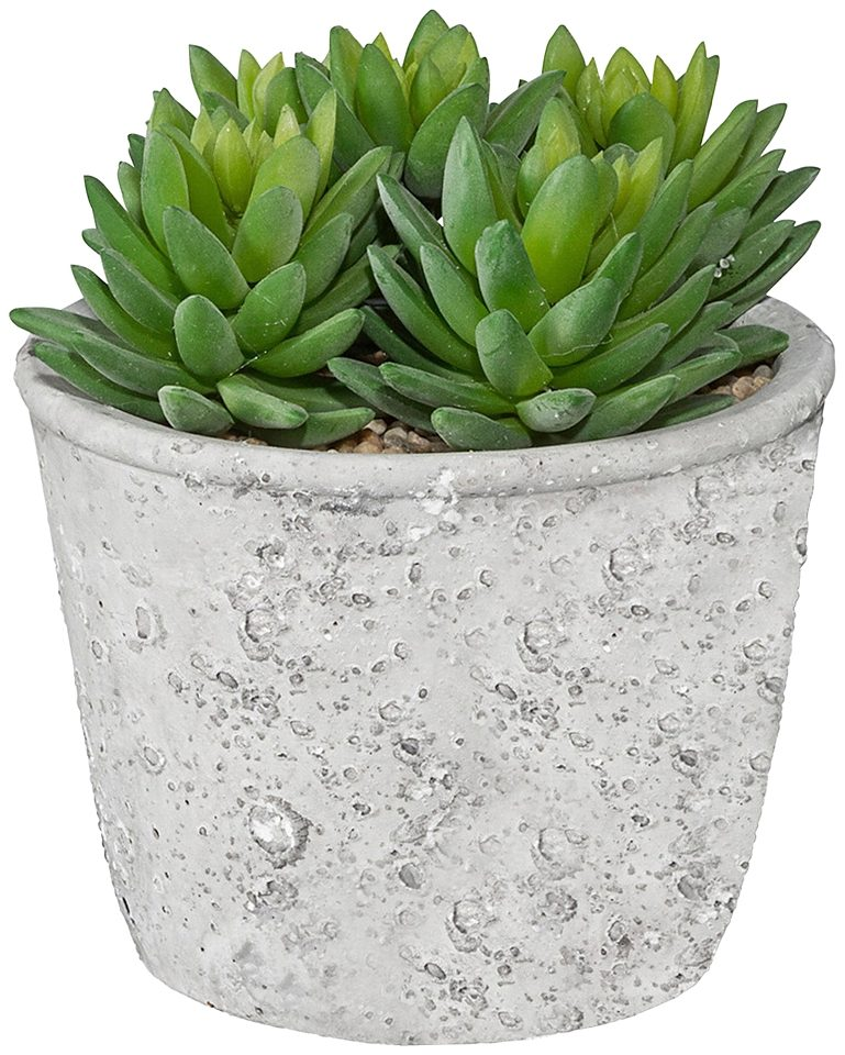 Kunstpflanze »Echeveria« inkl. Pflanzgefäß