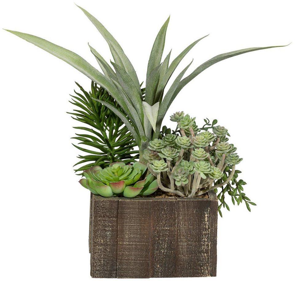 Kunstpflanze »Sukkulentenarrangement« inkl. Pflanzgefäß in grün