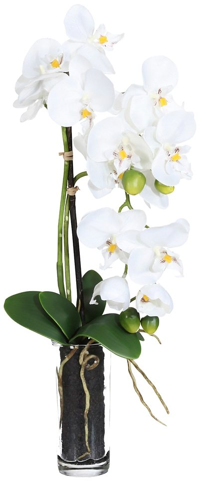 Kunstpflanze »Phalenopsis« weiß inkl. Pflanzgefäß (2 Pfl., H: je 50 cm) in weiß
