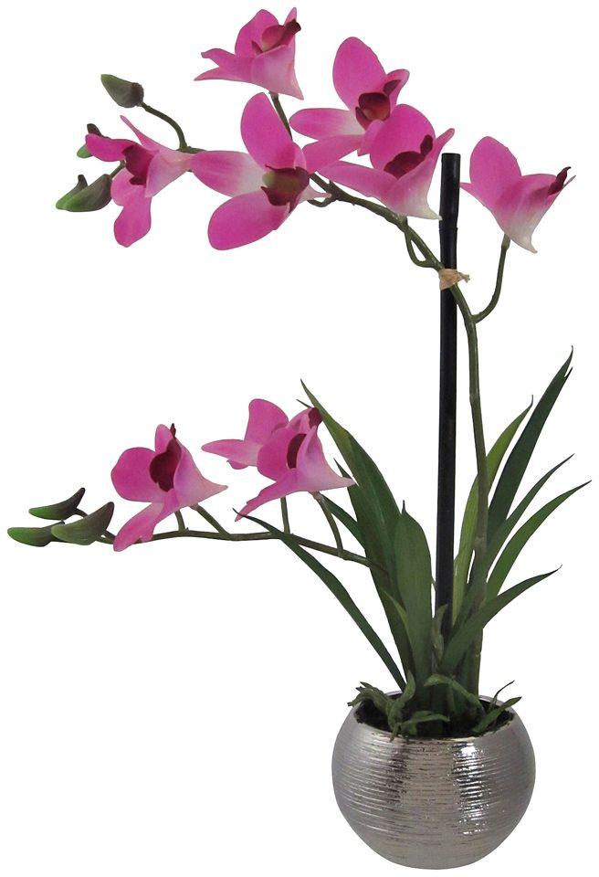 Kunstpflanze »Orchidee« lila inkl. Pflanzgefäß (H: 40 cm)