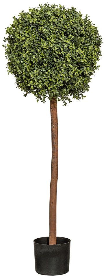 Kunstpflanze »Buchskugelbaum« inkl. Pflanzgefäß in grün