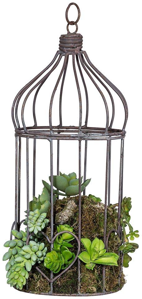 Kunstpflanze »Sukkulentenarrangement« im Metallkäfig in grün