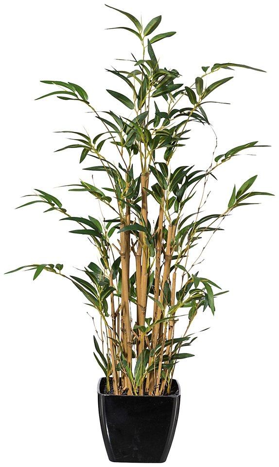 Kunstpflanze »Mini-Bambus« inkl. Pflanzgefäß (H: 80 cm) in grün