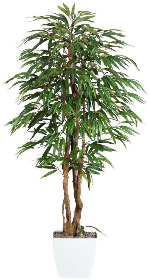 Kunstpflanze »Weeping-Ficus« inkl. Pflanzgefäß in grün