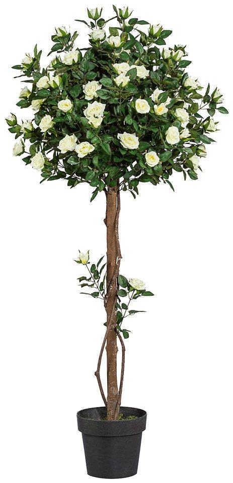 Kunstpflanze »Rosenkugelbaum« inkl. Pflanzgefäß (H: 90 cm) in natur