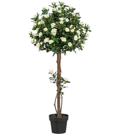 Kunstpflanze »Rosenkugelbaum« inkl. Pflanzgefäß (H: 90 cm)