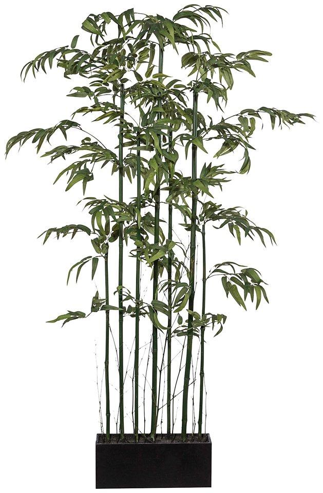 Kunstpflanze »Bambusraumteiler« inkl. Pflanzgefäß in grün