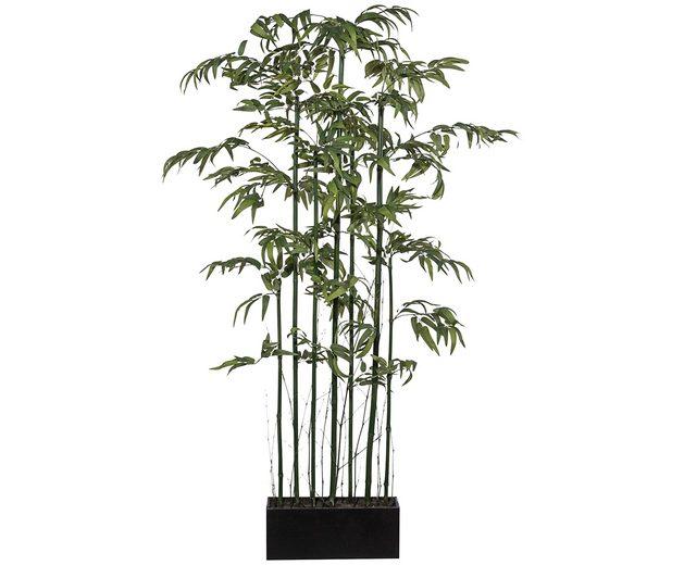 Kunstpflanze »Bambusraumteiler« inkl. Pflanzgefäß