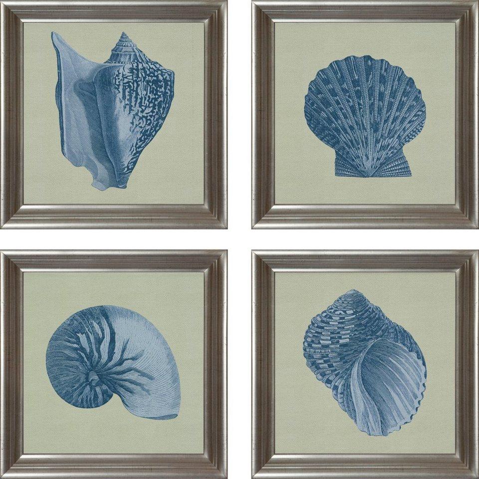 G&C gerahmter Kunstdruck »Chambray Shell Bilderset« , 4 maritime Motive à 40/40 cm in Grün/Grau