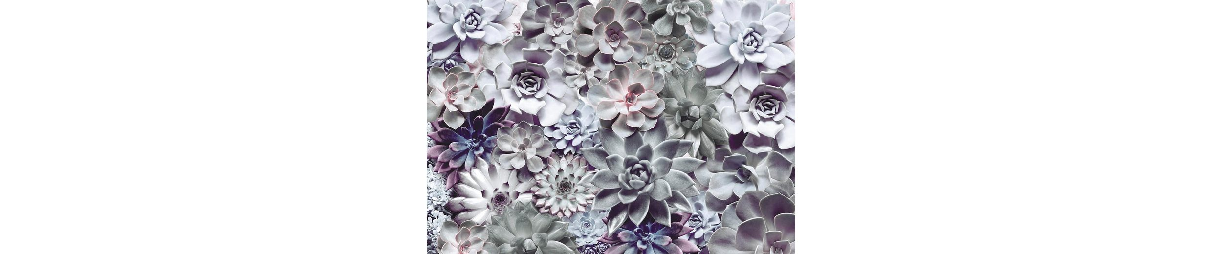 Komar Papiertapete »Shades«, 368/254 cm